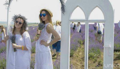 Reportaj foto! Cum a fost sărbătorit festivalul Lavender Fest 2016