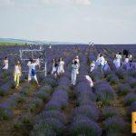 Foto: Lavender Fest revine. Iată ce surprize îți pregătesc organizatorii!