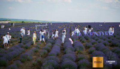 Lavender Fest revine. Iată ce surprize îți pregătesc organizatorii!