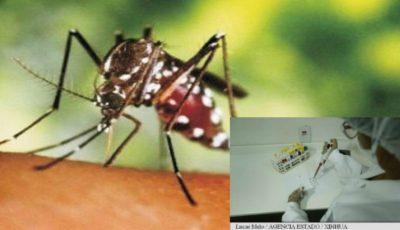 Un vast studiu asupra consecinţelor infecţiei cu virusul Zica este lansat în lume