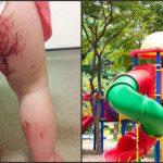 Foto: O fetiţă a mers la locul de joacă, însă a ieşit din tobogan plângând. Motivul este şocant!