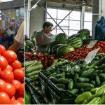 Foto: Expert: ,,Ţăranii moldoveni folosesc de capul lor chimicalele la cultivarea legumelor, iar, ca urmare, tot mai mulţi oameni se îmbolnăvesc!''