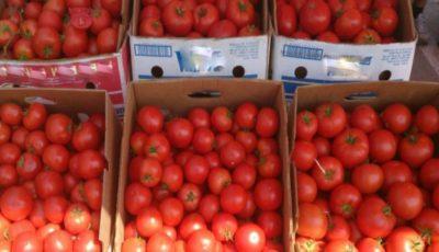 Alertă! Un pesticid periculos, depistat într-un lot de roşii ce trebuiau să ajungă la vânzare