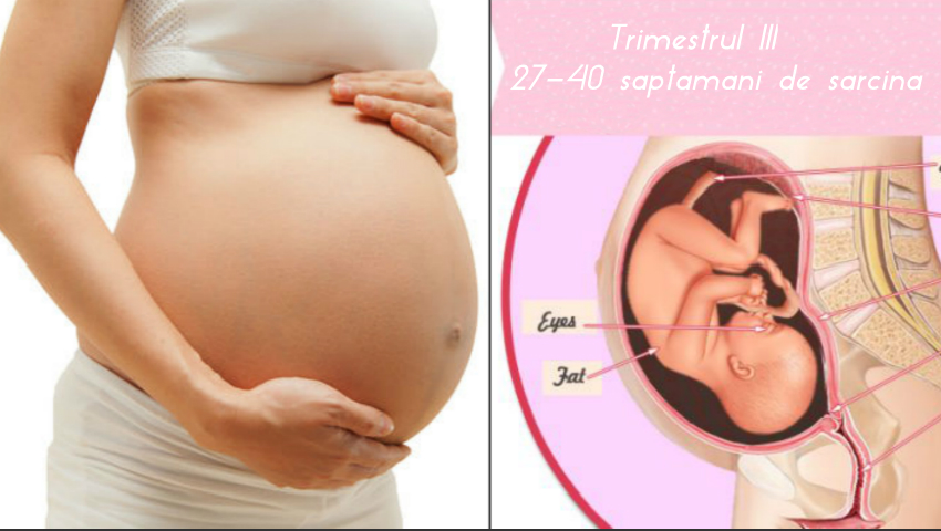 Foto: Jurnalul unei gravide: ce schimbări au loc în organism în trimestrul III de sarcină! Video