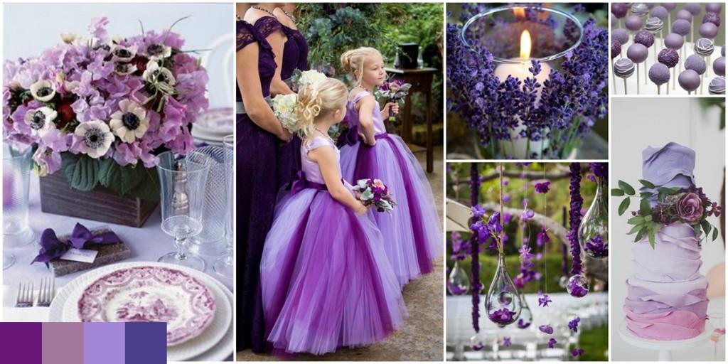 de-la-violet-la-purpuriu