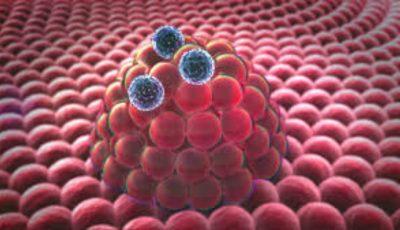Adevărul despre răspândirea cancerului a ieşit la iveală! Cum se propagă boala