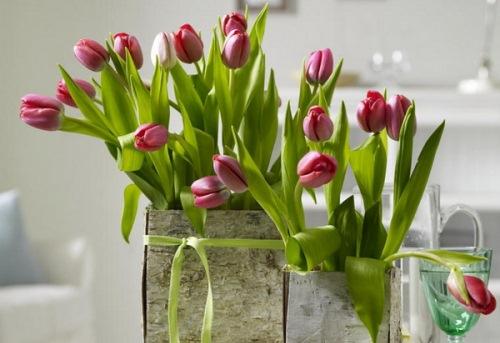 vaze-flori-scoarta-de-copac