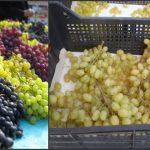 Foto: Consumatori înşelaţi! Struguri importaţi din Turcia, vânduţi în Moldova ca produse autohtone