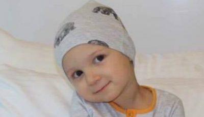 La doar doi anişori, David suferă de cancer. Să-l ajutăm împreună!