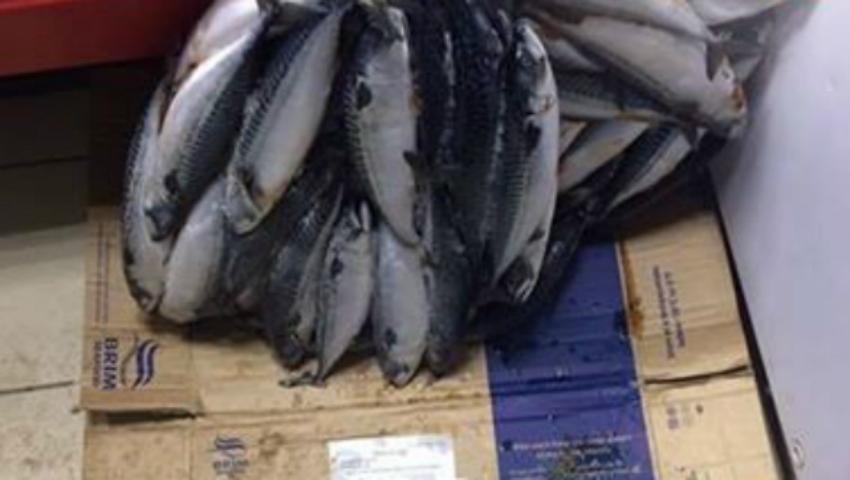 Foto: Revoltător! Un magazin din capitală păstrează peştele îngheţat pe pardoseala plină de noroi!