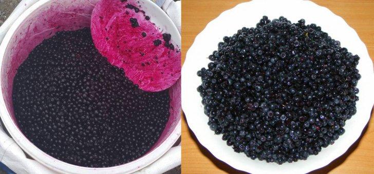 fructe-toxice-vandute-drept-afine-in-oborul-din-constanta-daca-eu-reclam-ca-cineva-otraveste-populatia-ii-doare-in-150229_41879700