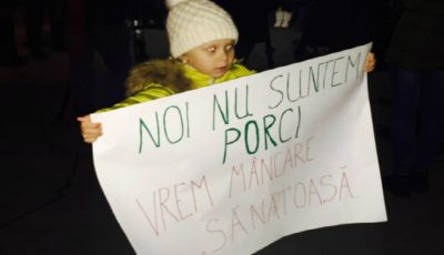 """Părinții au ieșit la protest și au scandat: ,,Nu ne otrăviți copiii!"""", """"Jos corupția""""! Care a fost reacția autorităților?"""