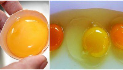 Cum îţi dai seama dacă oul este de calitate şi conţine nutrienţii necesari pentru organism