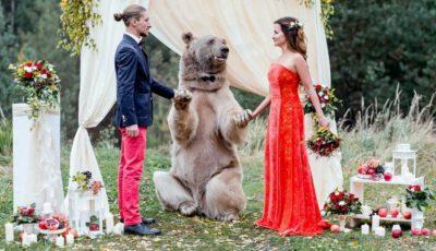 """Nimeni nu s-a mai uitat la mire şi mireasă! Un urs le-a """"binecuvântat"""" nunta"""