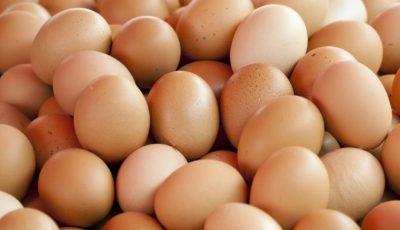 Ouăle moldovenești sunt exportate în Siria, Irak și Turcia!