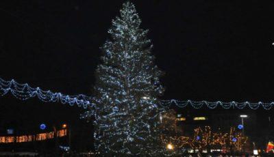 Cum a evoluat Bradul de Crăciun al Capitalei în ultimii zece ani? Poze