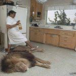 Foto: Animalele sălbatice nu vor mai putea fi ţinute acasă! În Emiratele Arabe Unite se aplică amenzi usturătoare