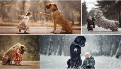 Un fotograf a realizat o colecție impresionantă de imagini cu micuți și patrupedele lor uriașe!