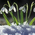 Foto: Primăvara e aproape. Vezi de când se încălzește vremea