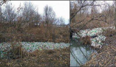 Imagini de groază! Așa arată râul Bîc