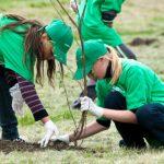 """Foto: """"Sădim Oxigen"""" la Chișinău! 5000 de copaci vor fi plantați într-o singură zi!"""