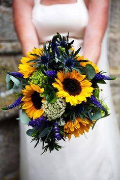 floarea soarelui3