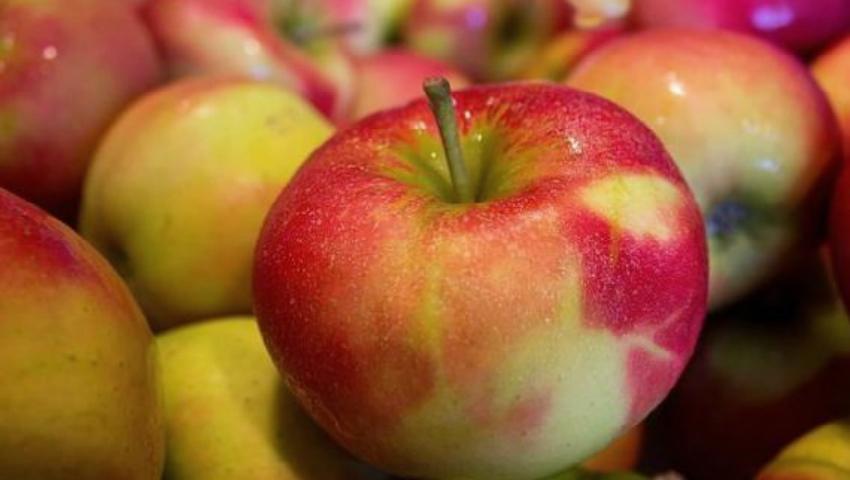 """Foto: Cât de ecologice sunt ,,merele de la bunelul""""?"""