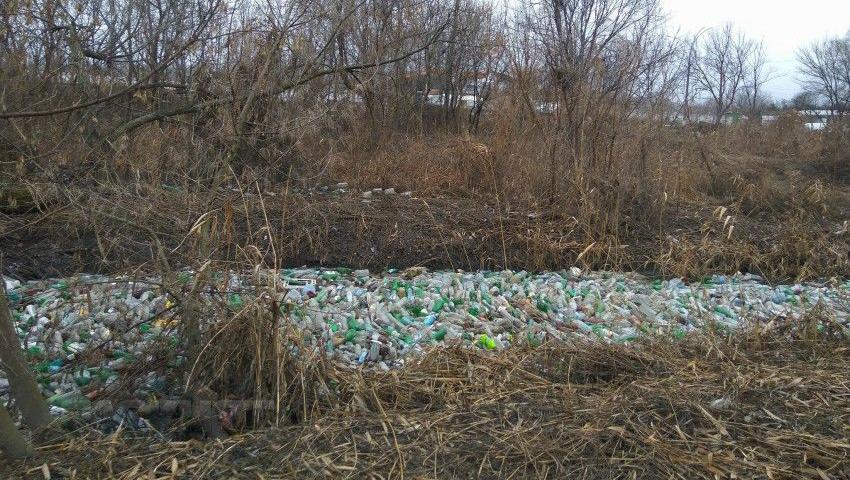 Foto: Un grup de tineri a curățat râul Bîc! Iată cum arată acum