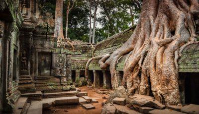 Imagini spectaculoase! 20 de poze în care natura învinge civilizația