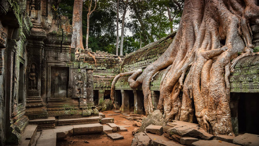 Foto: Imagini spectaculoase! 20 de poze în care natura învinge civilizația