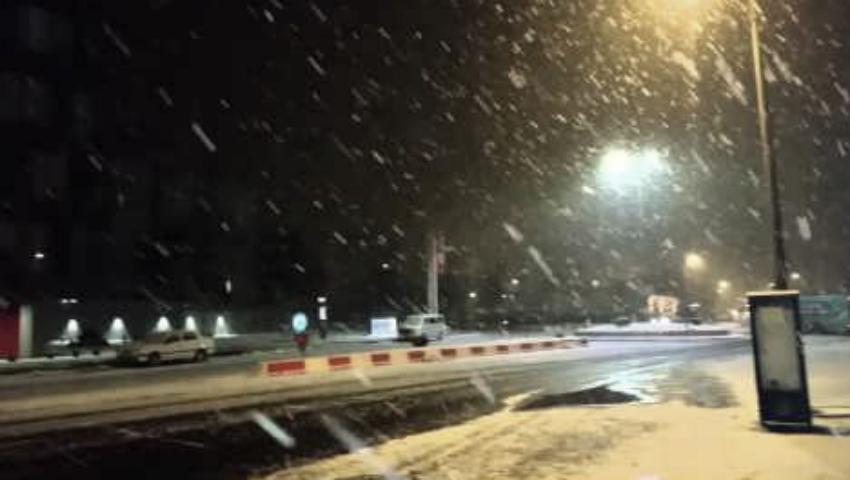 Foto: Ninge în nordul Moldovei!