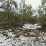Foto: Imagini din Parcul Valea Trandafirilor. Cum arată după stihie!