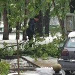 Foto: FOTO Dorin Chirtoacă adună crengile din Parcul Central al Capitalei