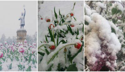 Zăpadă la sfârșit de aprilie! Cum arată astăzi Chișinăul!