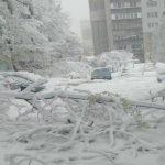 Foto: Ninsoare puternică în Ucraina! Video