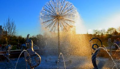 Un havuz de toată frumusețea a apărut în parcul dendrologic al Universității Tehnice din Moldova!