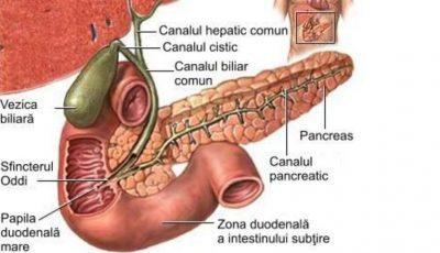 Află cum poți trata fără medicamente pancreatita cronică, deschinezie biliară, gastrită, constipația cronică