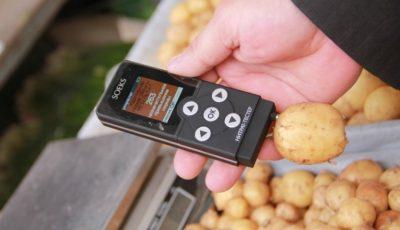 Atenție! După frunzele de salată, s-a constatat că și cartofii noi de pe piață sunt plini de nitrați