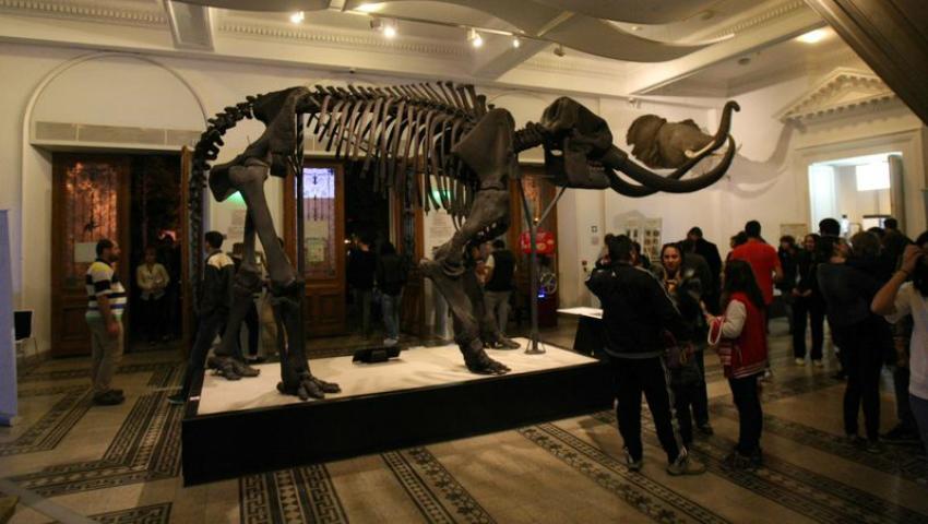 Foto: Ce vei putea vedea la Noaptea Europeană a Muzeelor!