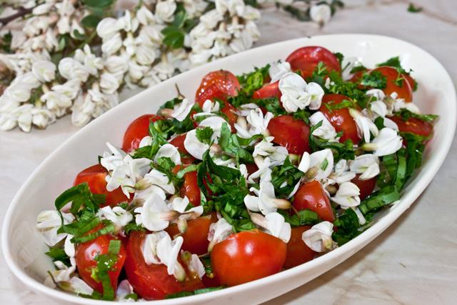 salata-salcam-final1