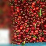 Foto: În piețele din Capitală au apărut primele cireșe! Cu cât se vinde un kilogram?