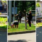 Foto: Două femei în stare de ebrietate au rupt trandafirii de pe o alee din Chișinău