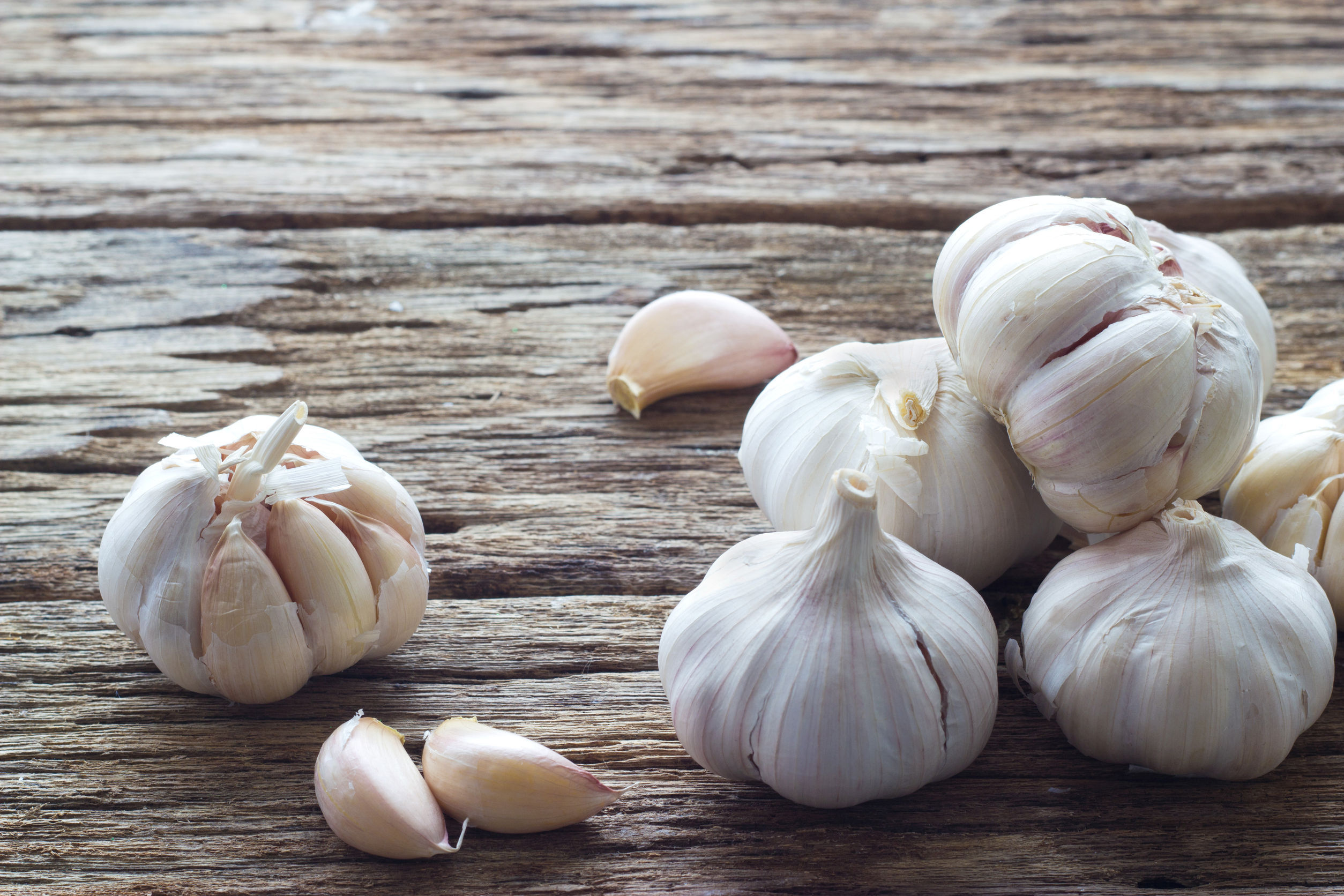 41401711 - garlic on the wooden background