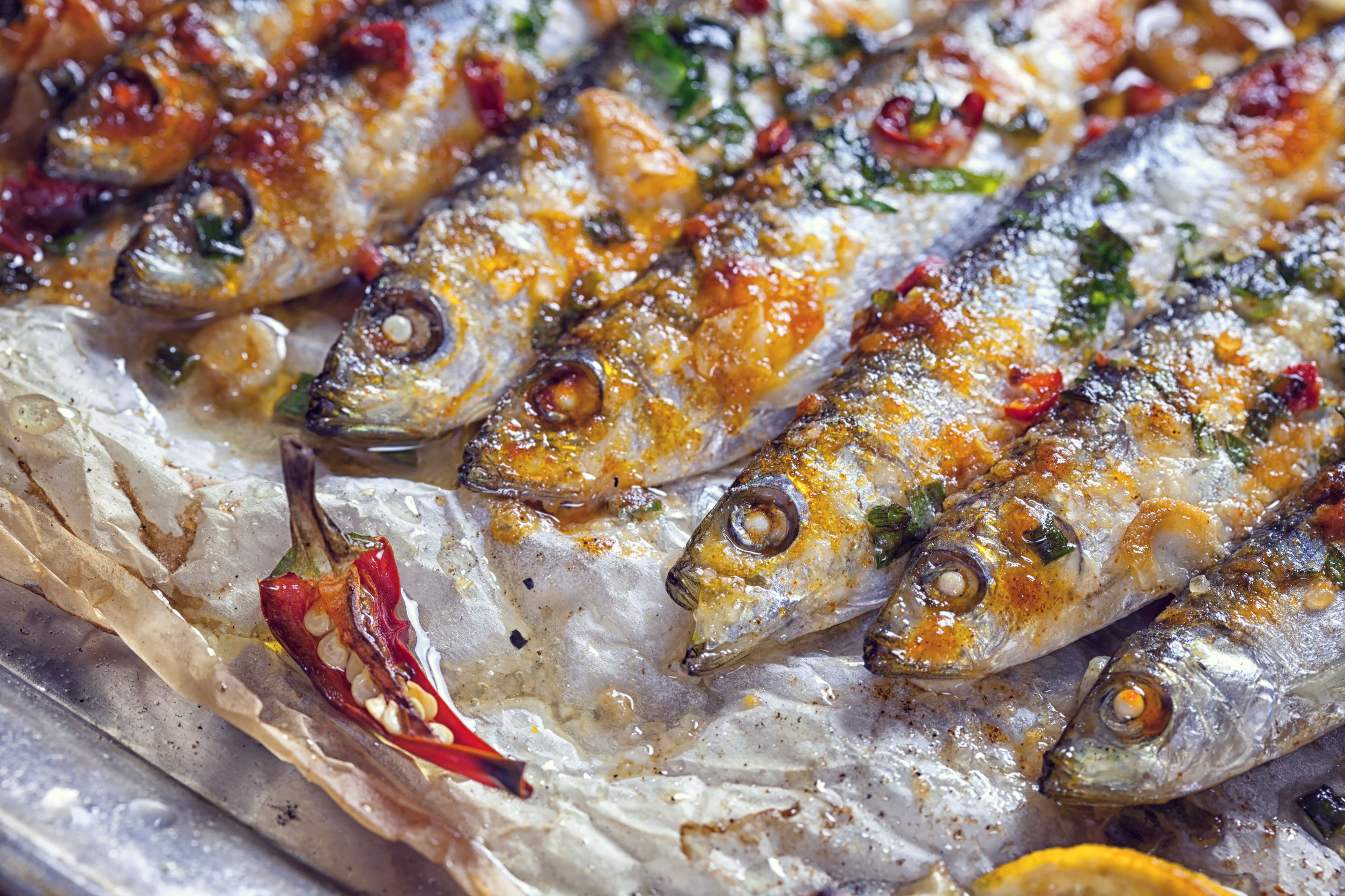 60213570 - grilled sardines on baking sheet