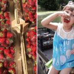 """Foto: FOTO Aproximativ două tone de fructe au ajuns la """"Summer Berry Fair"""". Scuarul Catedralei s-a transformat într-un adevărat târg agro-gastronomic"""