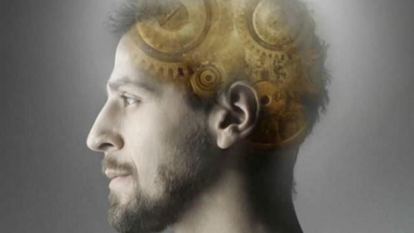 Ce nu știai despre creierul tău