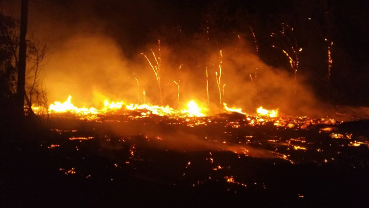 Foto: Incendiu puternic la Cimitirul Sfântul Lazăr din Capitală