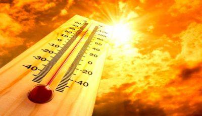 Cod galben de caniculă! Temperaturile vor crește până la 40 de grade Celsius
