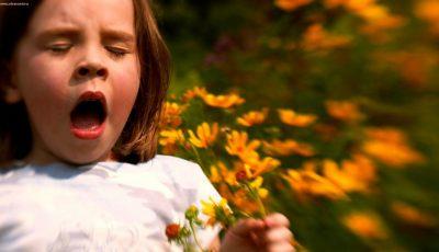 Alergiile de vară la copii. Cauze, simptome și tratament