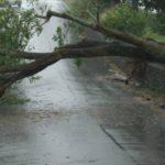 Foto: Furtuna și ploaia au făcut ravagii în nordul țării